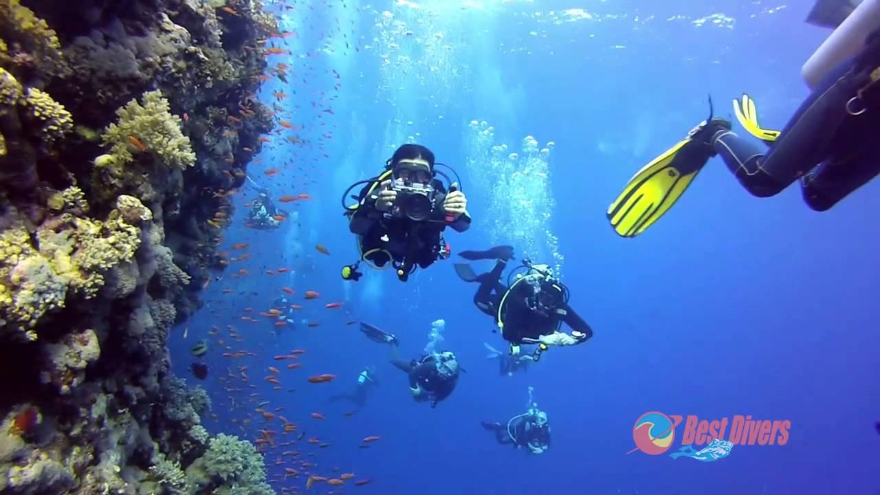 nurkowanie w egipcie okolice safaga